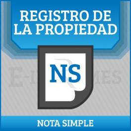 Informe del registro de bienes muebles online for Registro de bienes muebles de valencia