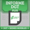 Registro de Bienes Muebles + Informe DGT Matrícula