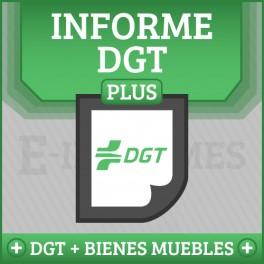 Registro de Bienes Muebles + Informe DGT Matrícula Online