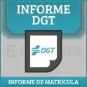 Informe de Matricula DGT