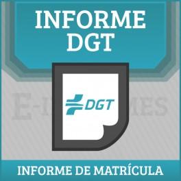 Informe de Vehiculo-Matricula DGT Online BONO 50 INFORMES